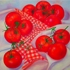 The_tomatoes__oil_on_linen_40x40