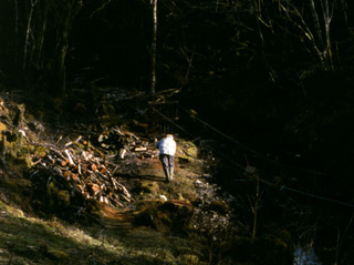 Origin of the Species (film still), Ben Rivers