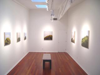 Blind Spot: Installation Shot, Anita Bunn