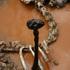 20110224150437-bird___bronze___2007