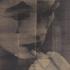David-noonan-image