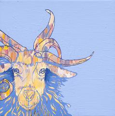 20110225192258-goat