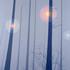 20110226151942-af-pa-09-03