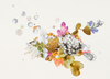 20110304090336-5-untitled-paper-lure-_pearls-crop-1__-150-saved-for-web