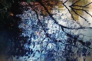 Cadence Entertwine, David T. Kessler