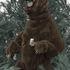 20110307081624-shamus_clisset_grizzlysuit