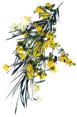 Yellow Flower, Stephen Eichorn