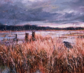 Reed beds, Roy Rodgers