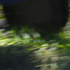 20110311202334-storm_det1-1