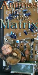 Animas in the Matrix, Patricia Krebs