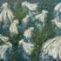 20110314140055-white_dresses
