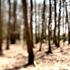 20110318052016-piet_warffemius_1170