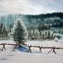 20110320145933-winter_faa
