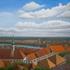 20110320151722-vienna_rooftops_faa
