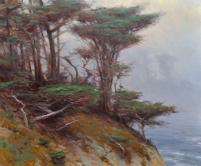 Cypress and Fog, Point Lobos, Jesse Powell
