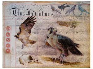20110323102057-falcon_document_in_progress