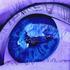 20110326114734-the_blueberry_eye