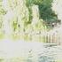 20110327085424-rite_