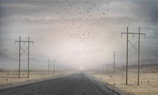 Highway , Suzanne Moxhay