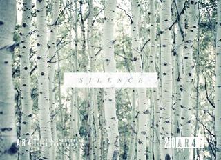 SILENCE: including work by Lauren Ross, Cole Barash, Kevin Zacher, Cheyenne Ellis, Stepanka,