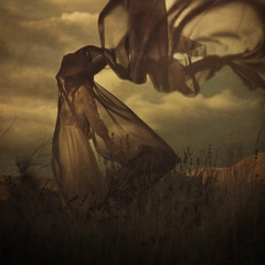 , Brooke Shaden