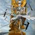 20110406161915-eagle_dove_skeleton8a
