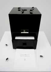 Fly Box (Gallery 360 Box Edition), Yoko Ono