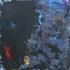 20110408061202-005
