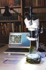 Installation view of the ongoing assessment of artefacts in. Stereo microscopy identifies handwriting on Object #24, a package of letters encased in beeswax.,Iris Häussler