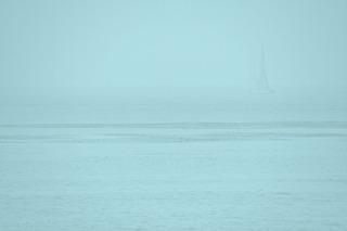 Dream Sailing, Seda Saar
