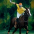 20110413014246-polo_player