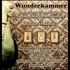 20110413112804-ghalib_wunderkammer_sm