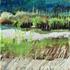 20110416153521-marilyn_banner_artslant
