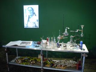The Curandera\'s Botanica, Amalia Mesa-Bains