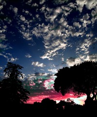 Savanna del Sol Alta California, Jerry Hicks