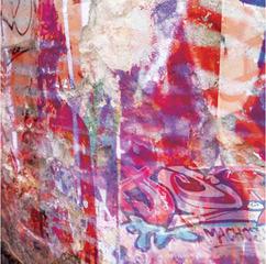 Berlin Walls 2.1.1, Laura Radwell