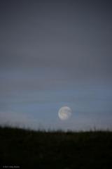 20110427224554-kelly-moonset01b