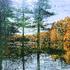 20110501165200-sun_goin_down_s_lk_24x24_