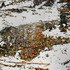 20110501171114-oct_overnight_snowfall_35_boy_scout_rd_1_24x32_