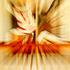 20110501235424-ephemeral_012173lr