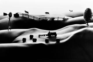 Farmlands, Allan Teger