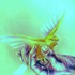 20110503033123-b_i_h