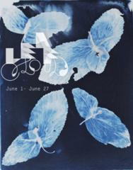 20110507154755-leaf-cloud-down-400px