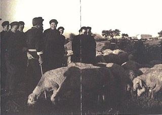 Chairman Mao and Shepherd, Zhang Dali