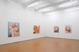 Installation View, Joan Semmel