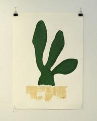 Cactus Evolution #3,
