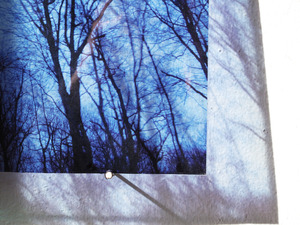 20110512162653-untitled_transparencies___late_winter__installation_view__ginafuenteswalker_small