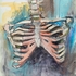 20110512204944-ribcage