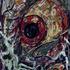 20110516130243-eye_series-22