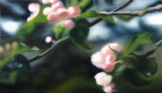 Apple Blossoms # 3, Ben van Netten